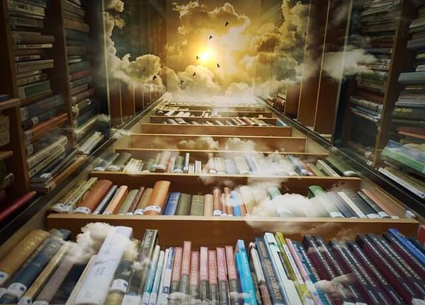 図書棚のイラスト