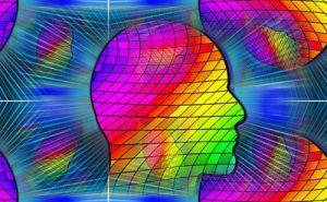人間の頭のイメージ画像