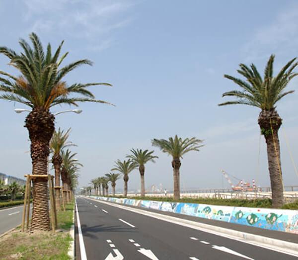 「うみかぜの路」の画像