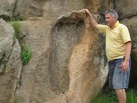 巨人の足跡の化石
