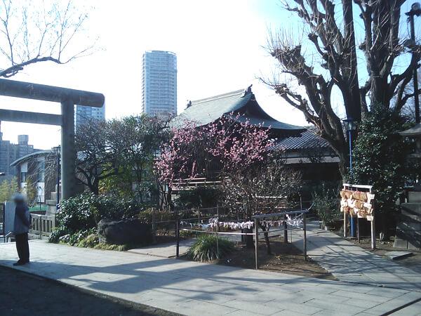 五條天神社の境内2