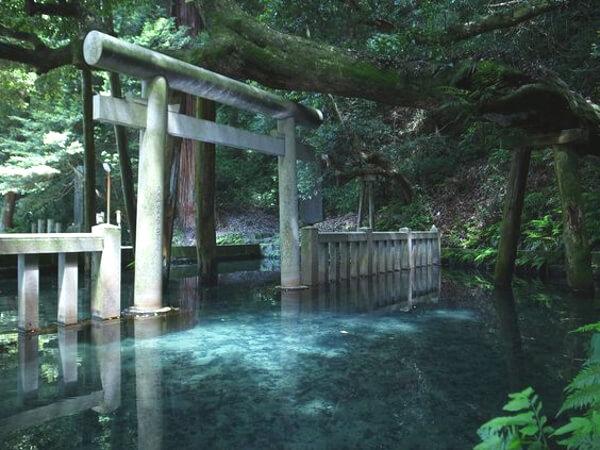 鹿島神宮にある御手洗池の写真
