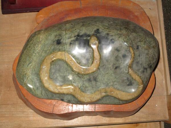 中年おっささんの白蛇の石の写真