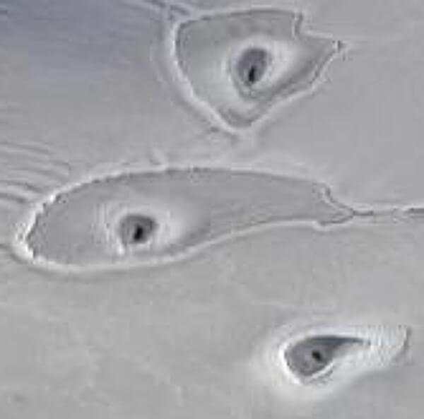 北極圏で発見された海氷の穴の写真(拡大)