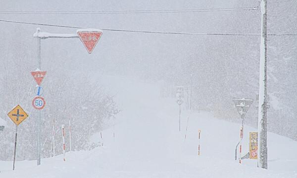 吹雪の写真