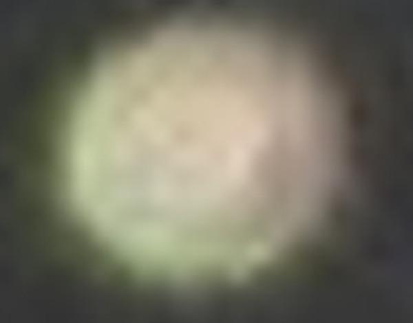 オーブの拡大写真