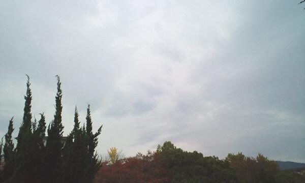 犬っぽい雲の写真