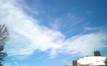 鳳凰っぽい雲の写真
