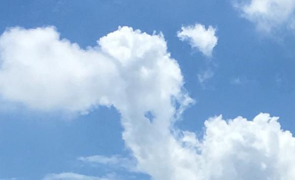ラクダのような雲の写真(拡大)
