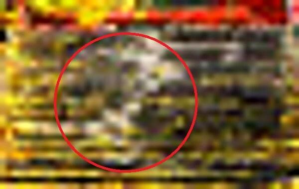 札幌伏見稲荷神社の写真