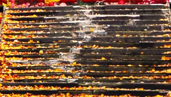 札幌伏見稲荷神社の写真(高解像度)