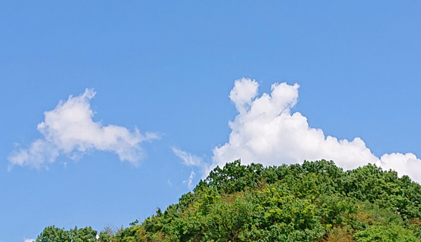 うさぎのような雲の写真