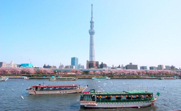 隅田川の写真