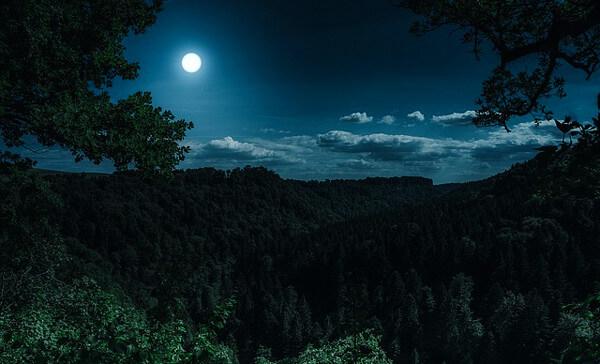 夜のイメージ画像