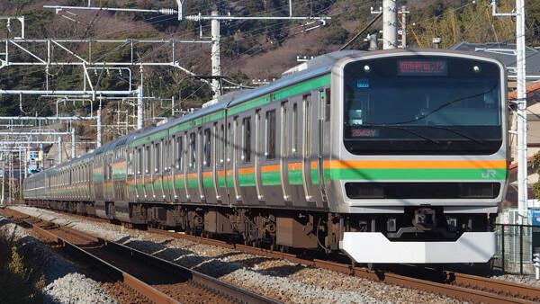 東海道線・宇都宮線・高崎線・上野東京ライン・湘南新宿ラインを走る車両の写真