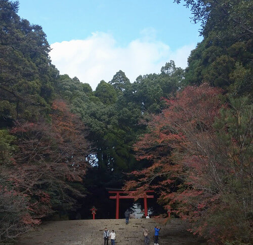 霧島神宮の写真