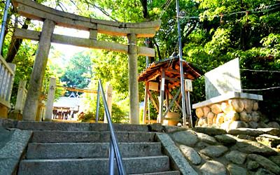 神社の写真