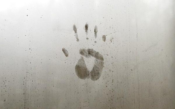 手形の写真
