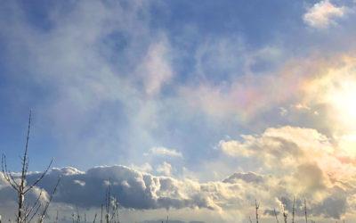 鳳凰のような彩雲の写真