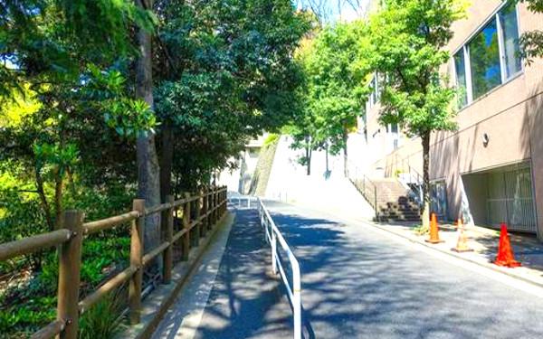 坂道の写真